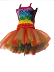 Adult Women's Fairy Ballet Tutu Dress Rainbow